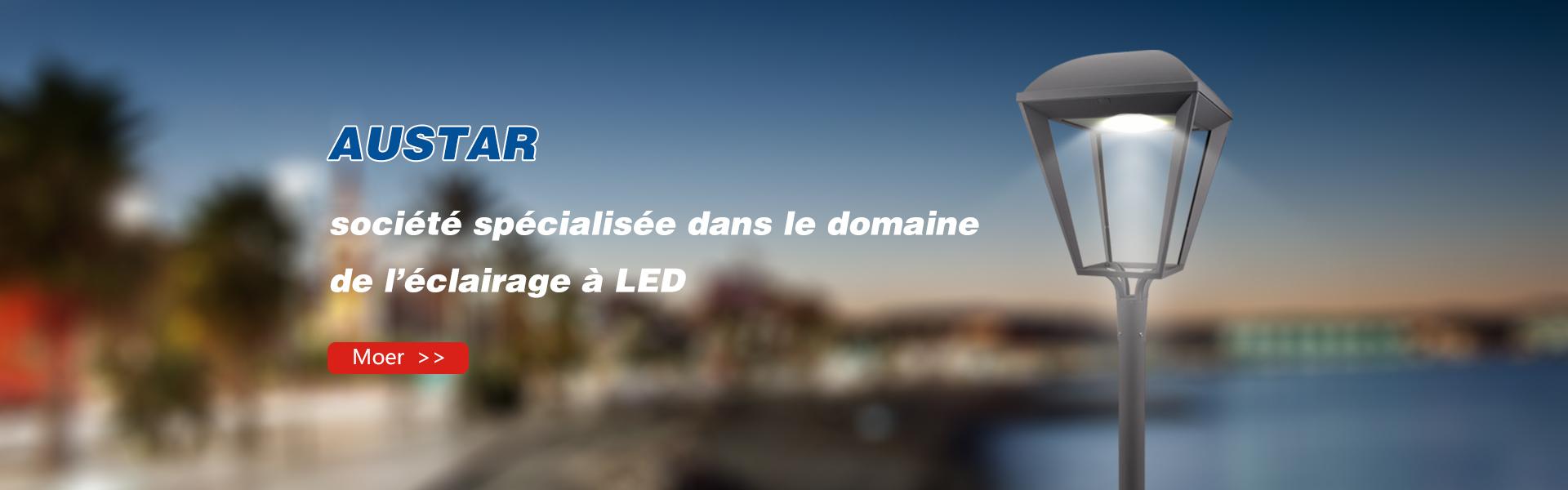 société spécialisée dans le domaine  de l'éclairage à LED